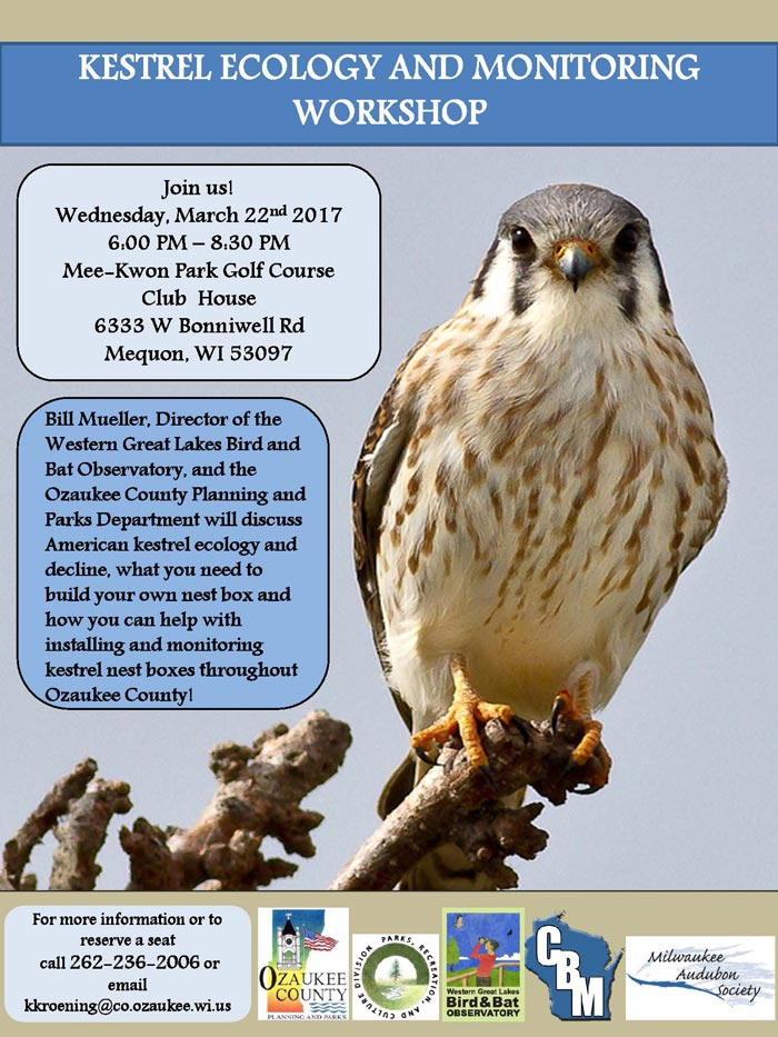 Kestrel Workshop Flyer 2017