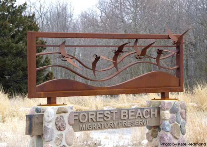 Forest Beach Migratory Preserve